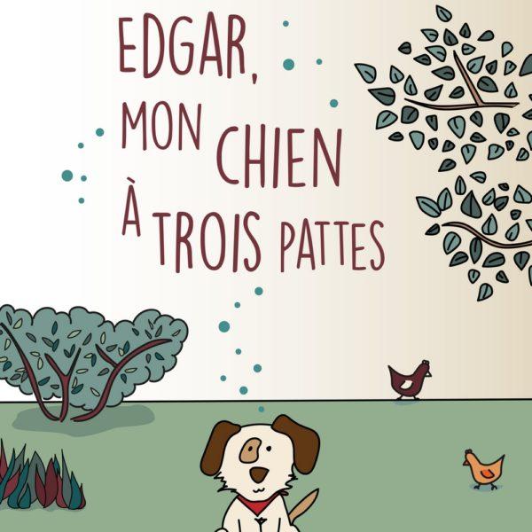 Edgar mon chien a 3 pattes livre enfant papier recycle ecologique