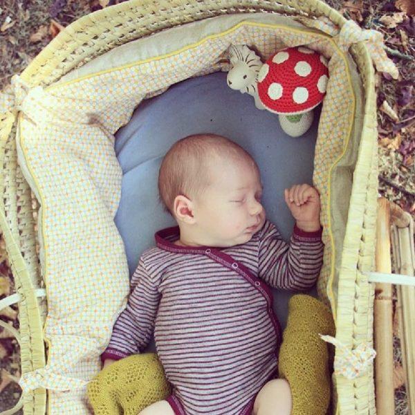 Saison des abeilles Jouet Peluche coton bio bebe enfant fruit champignon amanite