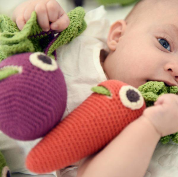 Saison des abeilles Jouet Peluche coton bio bebe enfant hochet legume fruit